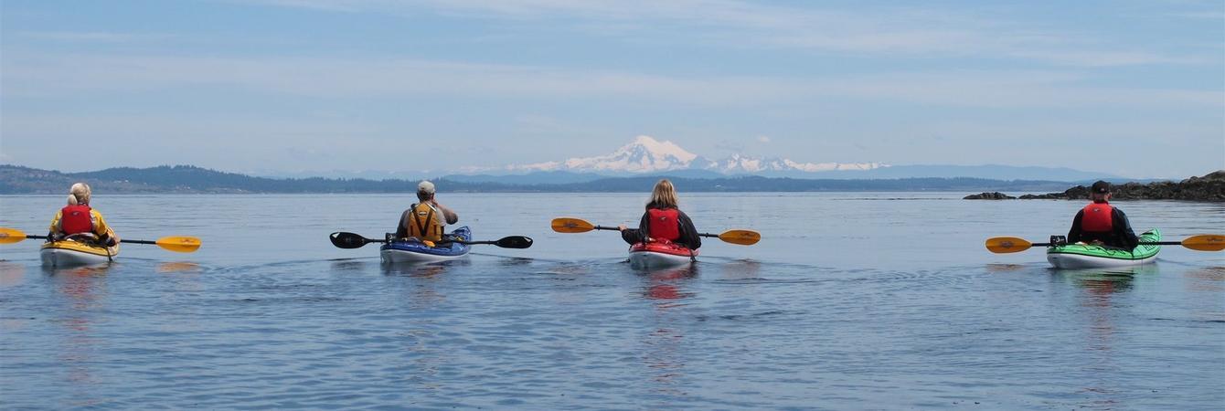 kayak tours oak bay marina oak bay marina